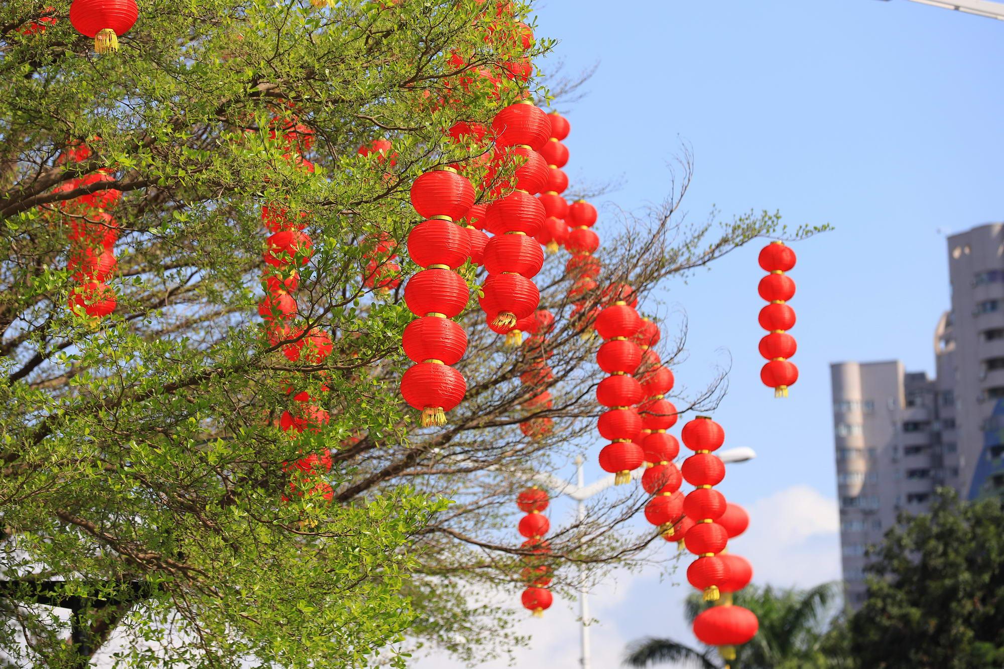 今日盘点:春节前七天全国网络零售额超1220亿元